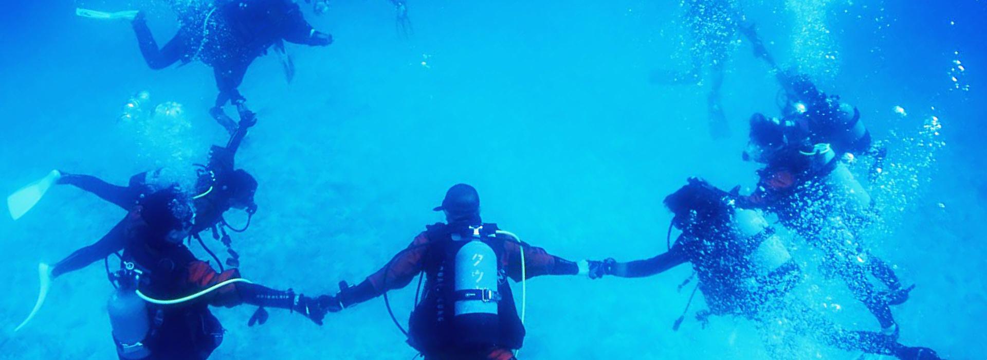 水中運動会ダイビング