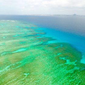 沖縄本島北部ボートシュノーケリング